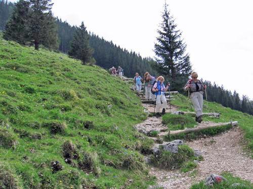 Abstieg über Almwiesen