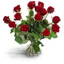 Rosen für Euch!