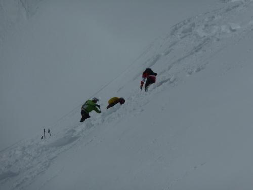 Skisuche