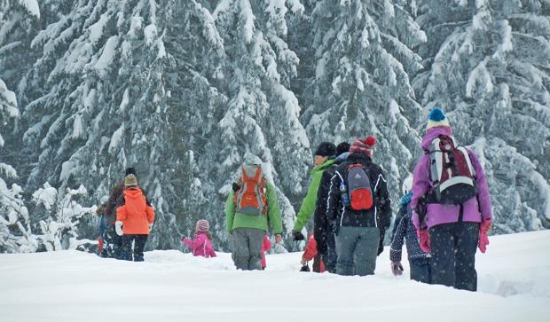 Wanderung im tief verschneiten Wald