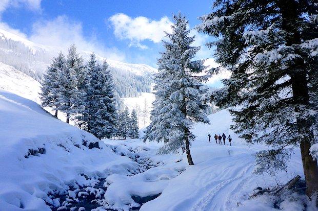 Im Aufstieg zur Schneegrubenspitze