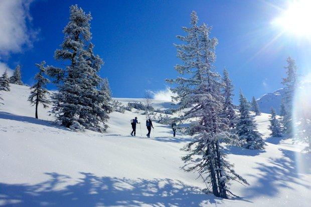 Auf Höhe der Schneegrubenalm