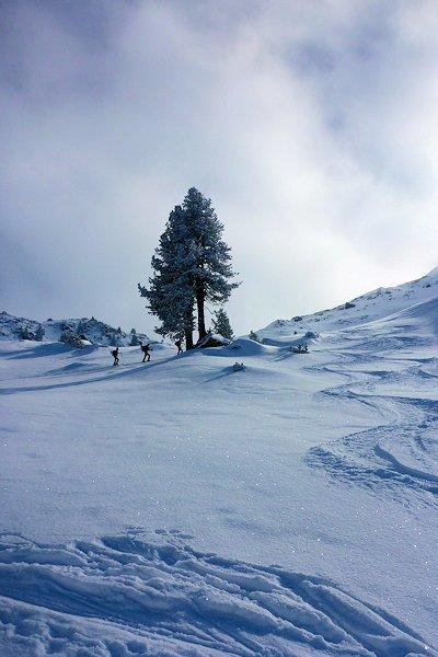Kurz vorm stürmischen Bergrücken zum Gipfel