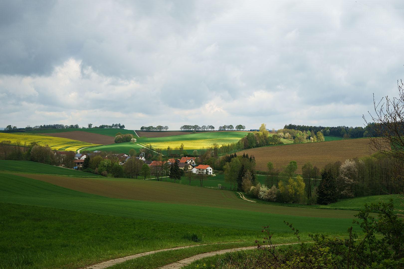 Marienweg oberhalb von Kleinthalheim